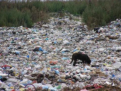 Мешканці села Буштино відмовляються від сміттєпереробного заводу (ВІДЕО)