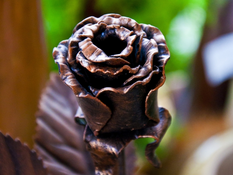 На Свалявщині викували троянду