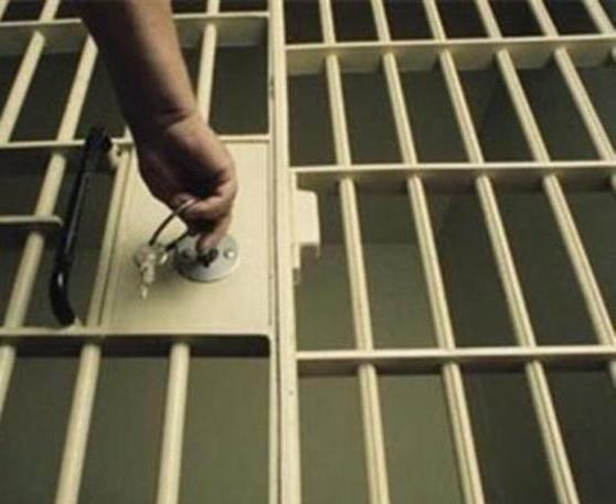 В Мукачеві зростає рівень злочинності