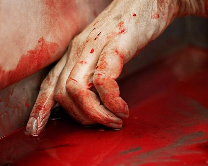 На Виноградівщині виявлено труп жінки з різаною раною на шиї