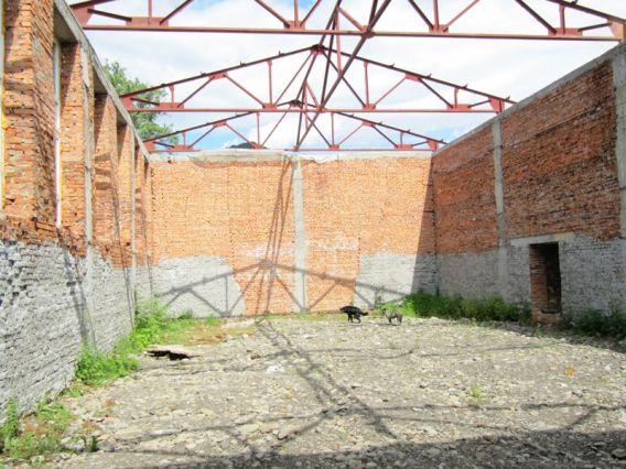 В Неліпино діти ходять до школи без їдальні та спортзалу (ФОТО)