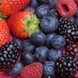 На літніх канікулах студенти заробляють гроші, збираючи ягоди за кордоном