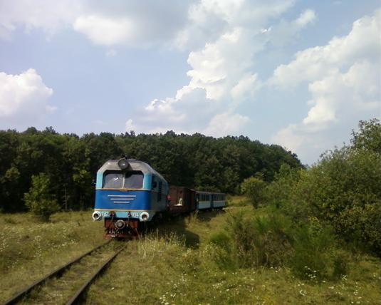 Обласна влада стала на сторону іршавців у збереженні Боржавської вузькоколійки