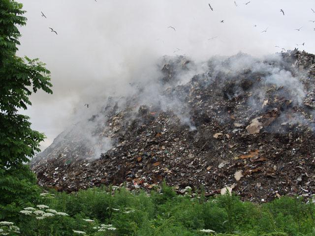 В Чопі невідомі підпалили сміттєзвалище