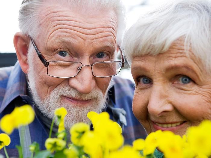 Угорські та закарпатські пенсіонери зберуться в Мукачеві
