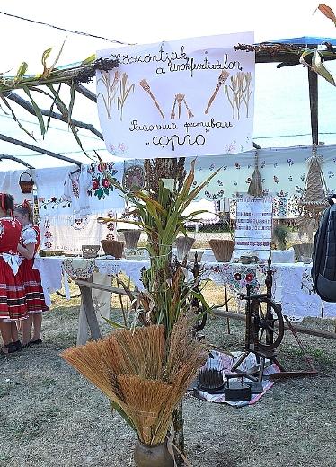 На Мукачівщині пройшов фестиваль віників (ФОТО)