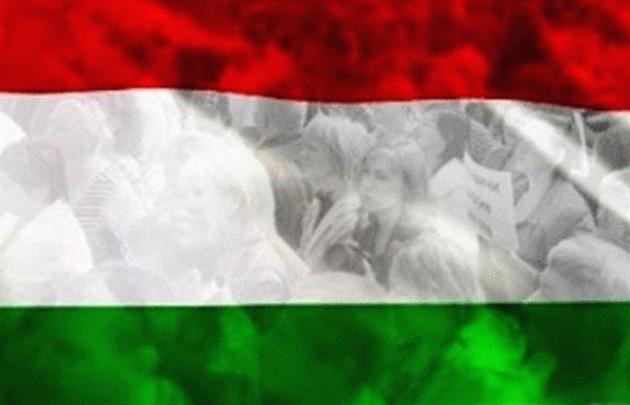 У Берегові угорську мову проголосили регіональною