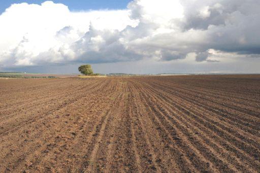 В ОДА обговорили процес реформування земельних відносин