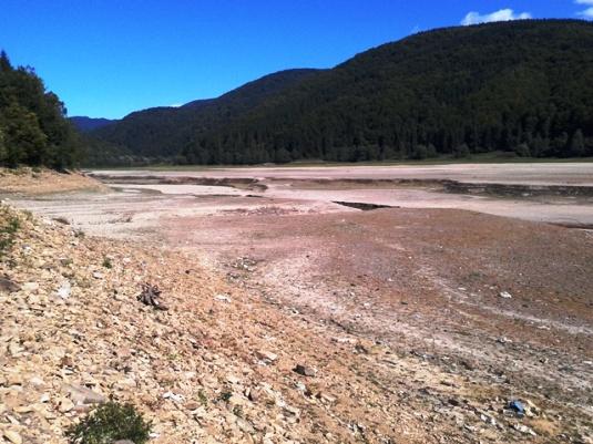 Тереблянське водосховище зменшилось не через спеку – його спустили навмисне