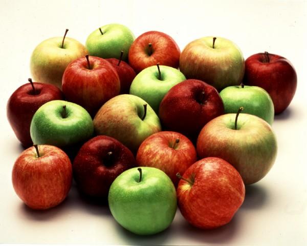 Аграрники Закарпаття переконані, що яблука стануть новою родзинкою краю (ВІДЕО)