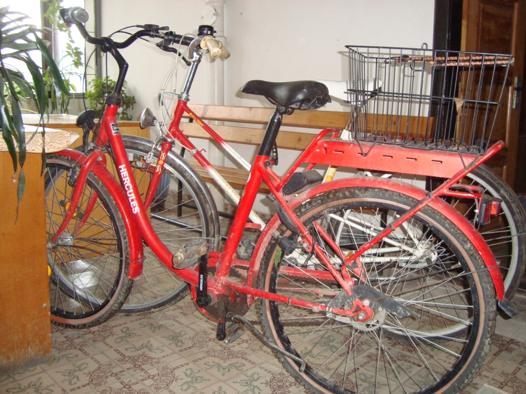 Правоохоронці міста Мукачева затримали велосипедних злодіїв