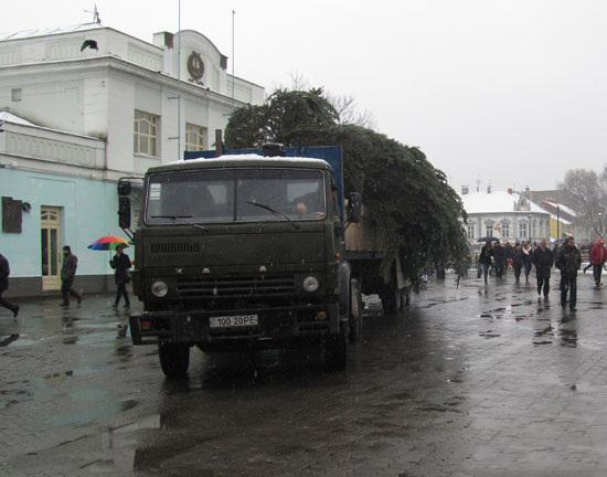В Ужгород привезли і розпочали монтаж головної ялинки міста (ФОТО)