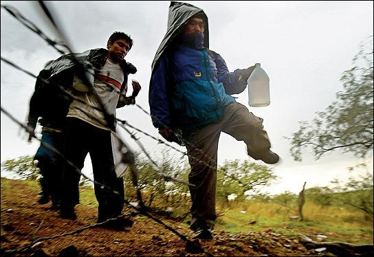 Нелегали намагались перетнути кордон на поїзді по підробленим документам