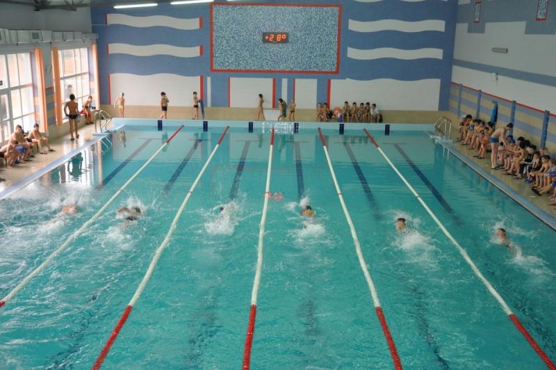 В Ужгороді відбулось змагання з плавання