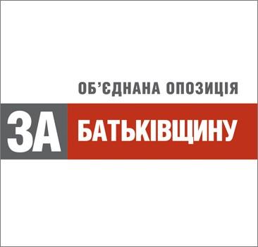 Закарпатська «Батьківщина» підбила підсумки виборів