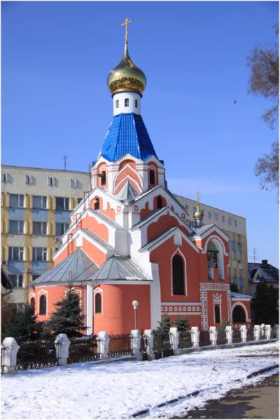 В Ужгороді на території церкви зрізали і викрали ялинку