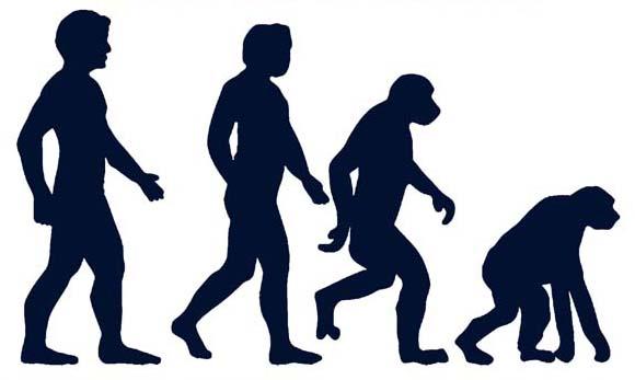 Зворотна еволюція