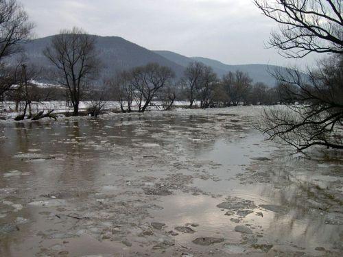 У Гідрометцентрі занепокоєні підняттям рівня води у річках Закарпаття