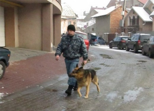 В Ужгороді на пустирі знайшли труп людини (ФОТО)