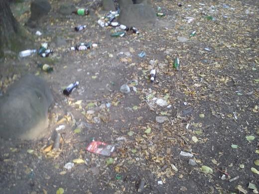Гори побутового сміття залишають після себе відпочивальники на Мукачівщині (ФОТО)