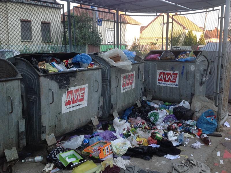 Щоб у Мукачеві вивезли сміття потрібно спочатку опублікувати його фото у соцмережі? (ФОТО)