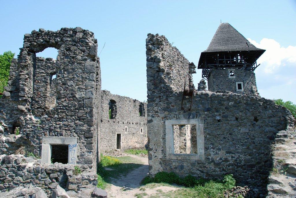 Іноземці шукають скарби у Невицькому замку (ВІДЕО)