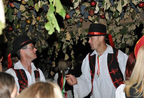 У місті Берегові відбудеться благодійний виноградний бал