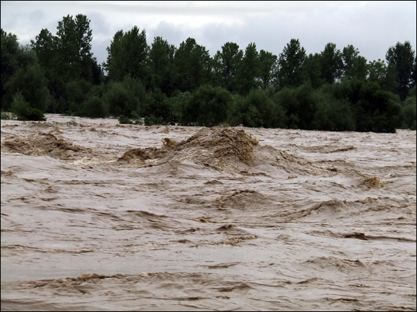 Через сильні дощі у Чинадієві в деяких місцях Латориця вийшла з берегів