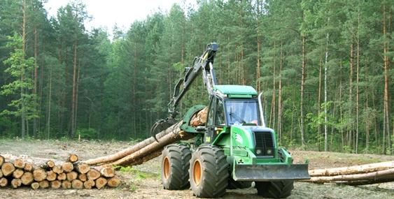 На Рахівщині на лісосіці загинув тракторист, сиротами залишилось 5 дітей