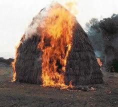 Через необережне поводження з вогнем, у селі Довге згоріло 2 тонни сіна