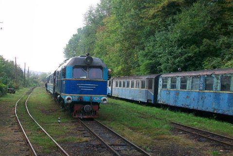 Боржавська вузькоколійка є нерентабельною – Львівська залізниця