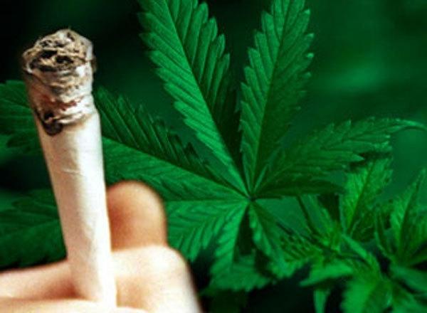 У Закарпатті викрито чотири десятки збувачів наркотиків, з незаконного обігу вилучено майже вісім кілограмів наркозілля