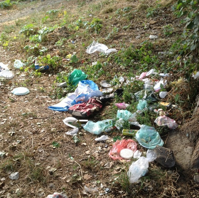 Завтра від самого ранку у Мукачеві прибиратимуть та озеленюватимуть місто