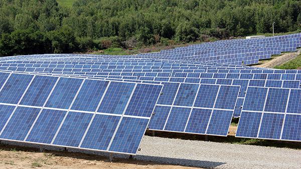 Бізнес на сонці: родини закарпатського губернатора, нардепа-енергетика та місцевого депутата вклались в електространцію