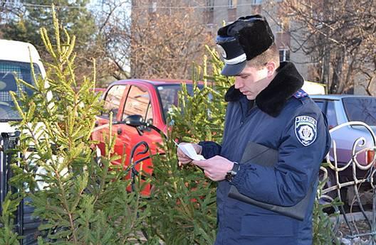 """В Ужгороді міліція спільно з журналістами провела рейд """"Ялинка"""""""