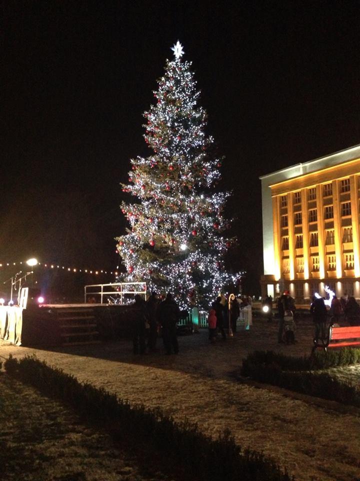 Головна ялинка Ужгорода – одна із найвищих та найкращих в Україні
