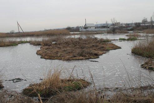 В одному із сіл Мукачівського району розгорівся справжній екологічний скандал (ФОТО)