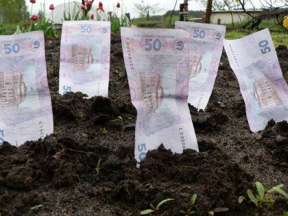 Прокуратурою Перечинського району вжито заходів щодо поповнення бюджету коштами за користування землею