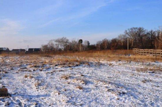 У лісі, де тримали викраденого Ігоря Луценка, знайшли два трупи зі слідами тортур