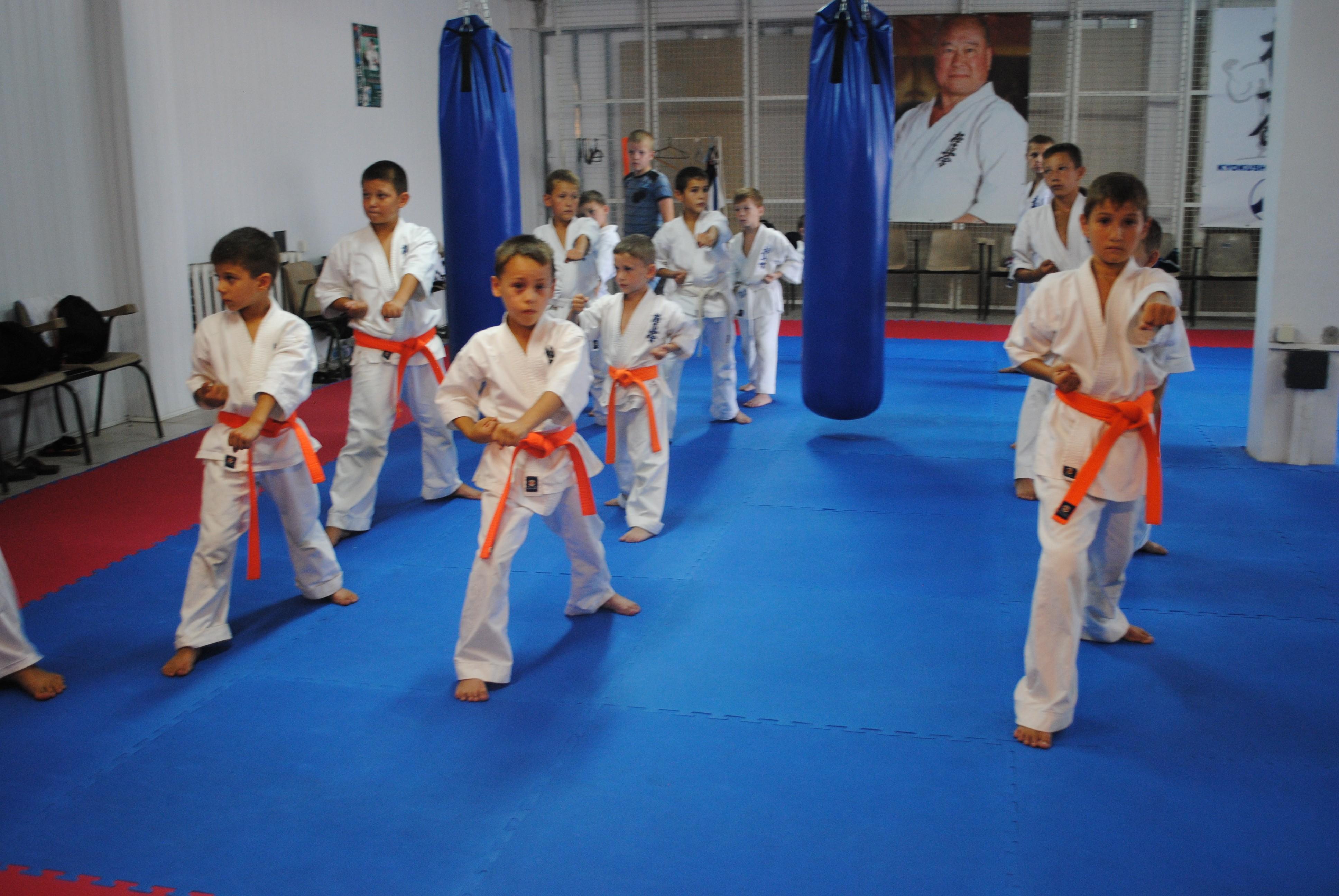 У Мукачеві відбувся майстер-клас з кіокушин-кан карате (ФОТО)