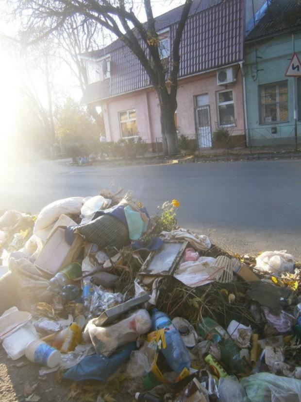 Ужгород потерпає від великої кількості сміття (ФОТО)