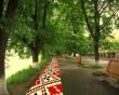 На липовій алеї в Ужгороді таки буде п'ятсотметрова вишиванка