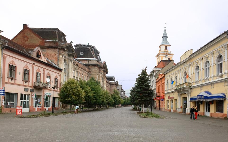 Військові, які лікуються у Мукачеві, відвідали з екскурсією Берегово
