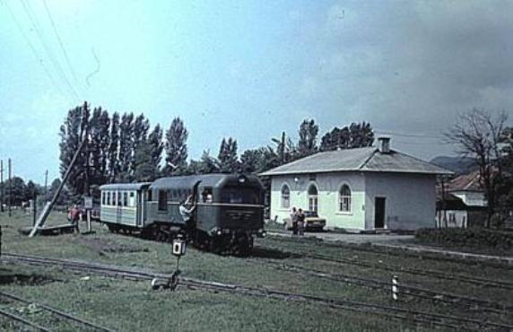 Іршавчани об'єднались проти можливого демонтажу станції Боржавської вузькоколійки