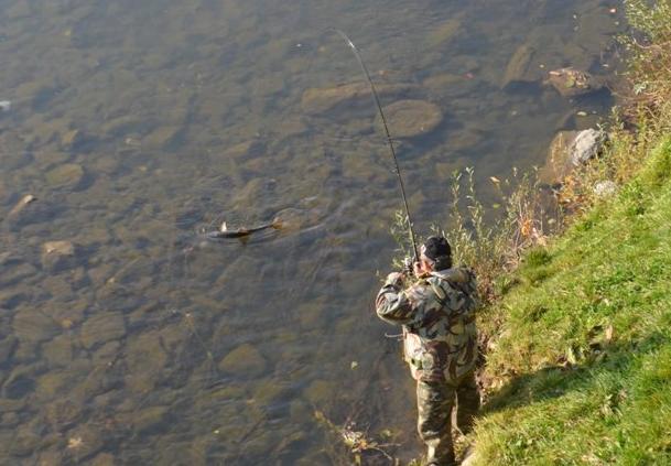 Гігантську здобич зловив ужгородець на березі річки
