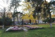 Площа Петефі в Ужгороді потонула у квітах (ФОТО)