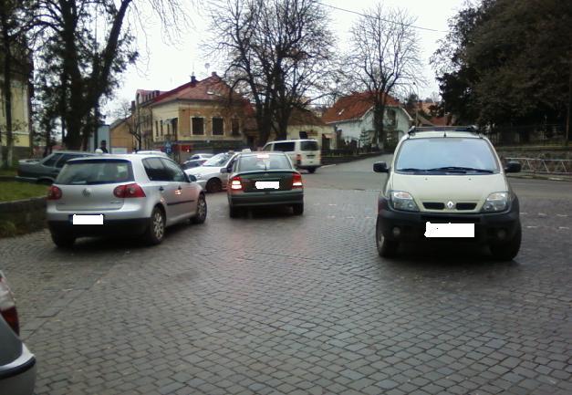 """Ужгородський """"олень"""" перекрив рух автотранспорту на одній з головних вулиць міста"""