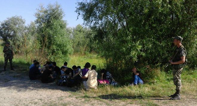 На Закарпатті прикордонники затримали одну з найбільших груп незаконних мігрантів