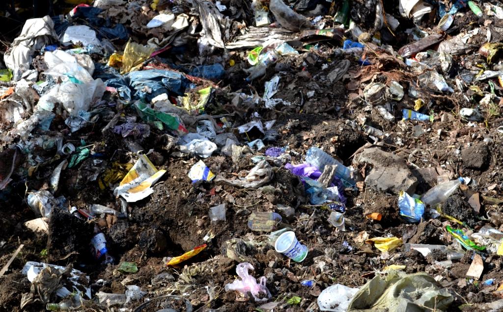 Безлад, сморід та зграї собак: на вулиці Лавріщева утворилось стихійне сміттєзвалище