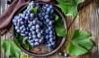 Закарпатські винороби прирівняли нове ліцензування продукції із радянськими антиалкогольними кампаніями